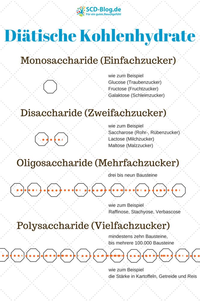 diätische-kohlenhydrate-scd-blog.de