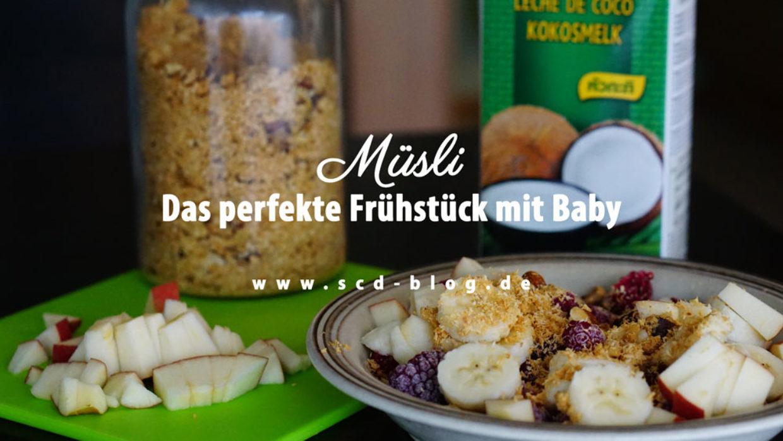 Müsli – Das perfekte Frühstück mit Baby